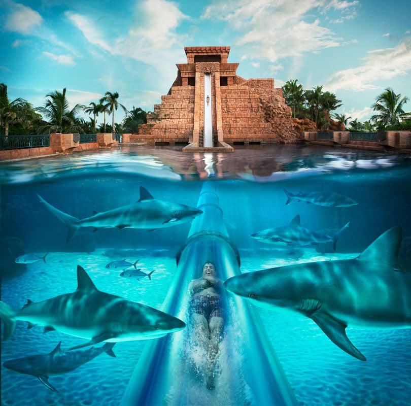 Atlantis Hotel Bahamas Luxury Trip Bahamas Custom Trip