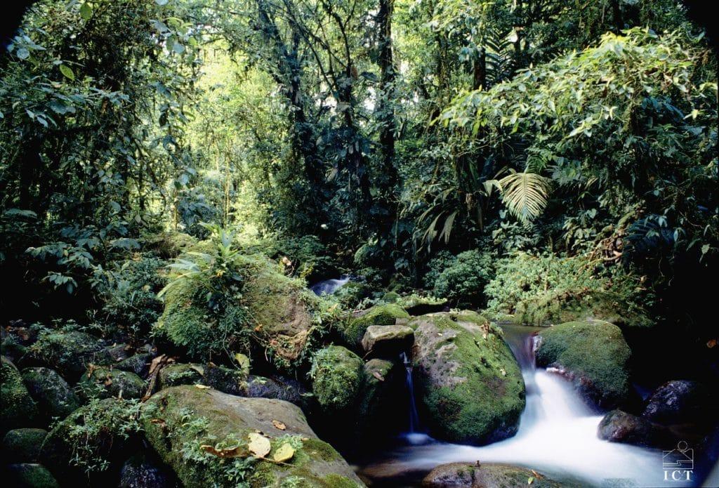 Cascade au coeur de la forêt du Costa Rica - voyage sur mesure
