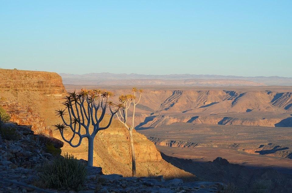 voyage sur mesure - excursion desert de namibie