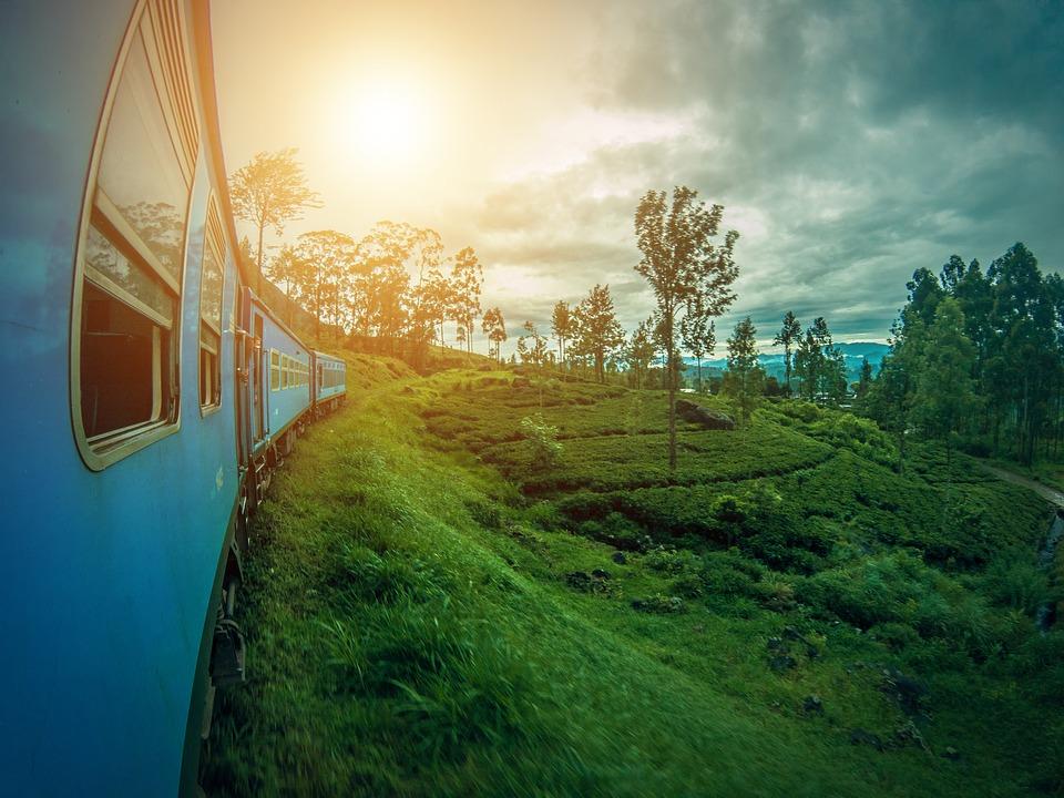 plantations-thé-Sri-Lanka-train