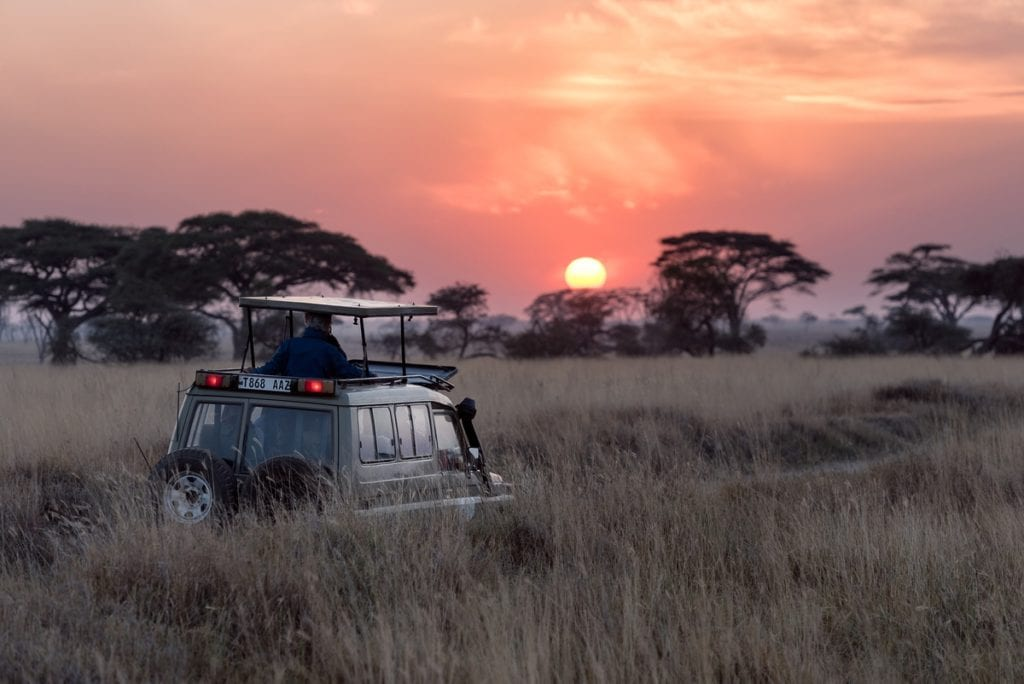 voyage sur mesure afrique du sud - reserve madikwe