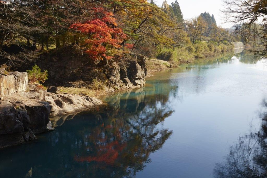 automne japon, rivière, arbres colorés