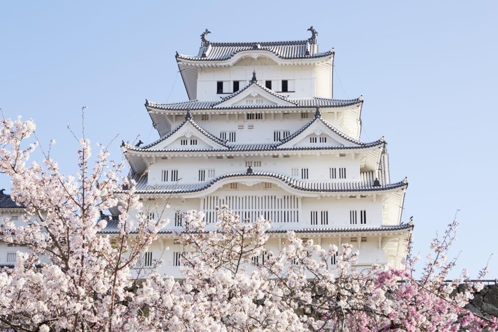 japon, cerisier, maison japonaise