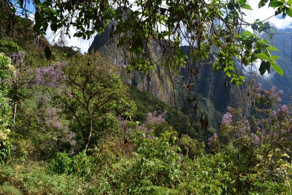 Machu Picchu Pérou - voyage organisé sur mesure