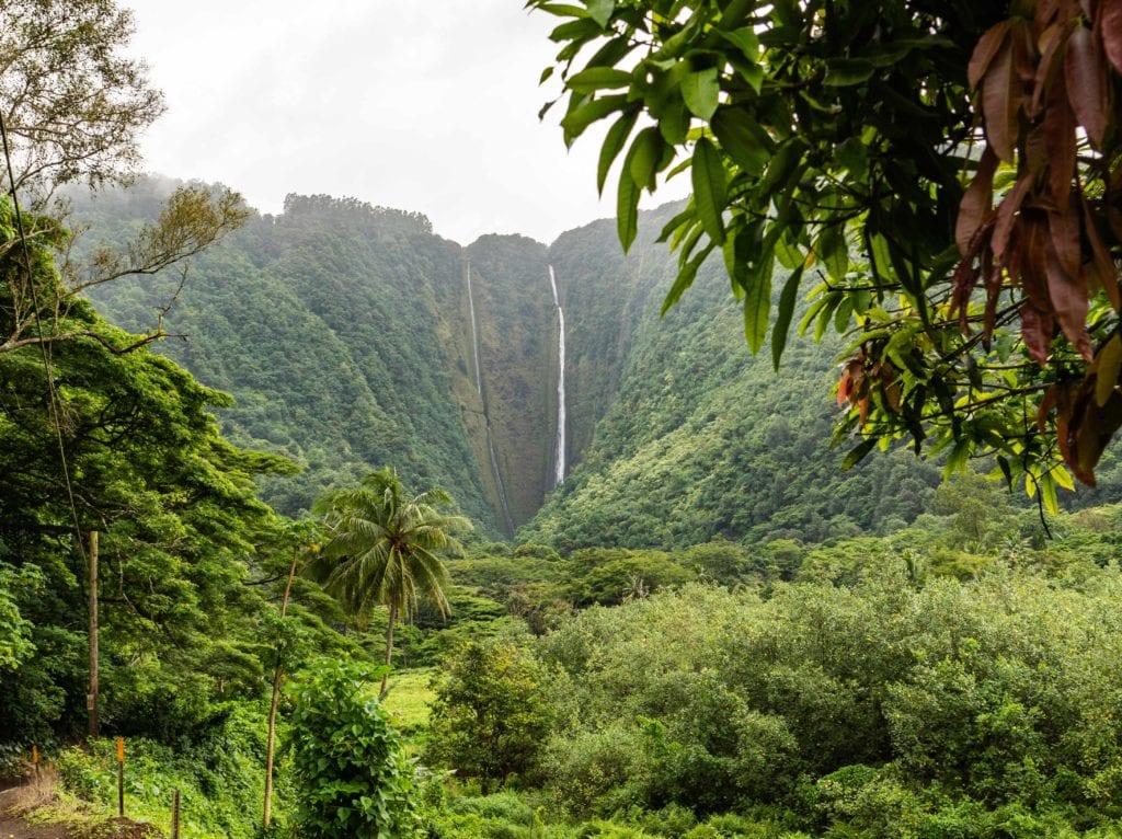 cascade hawaii - voyage a la carte