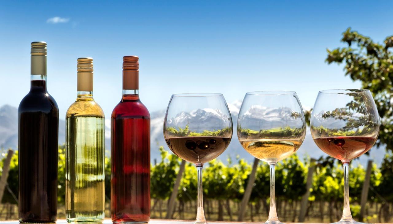vins - voyage sur mesure en Argentine