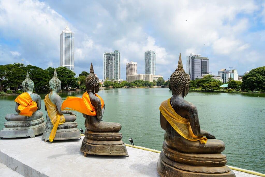 Colombo circuit sur mesure