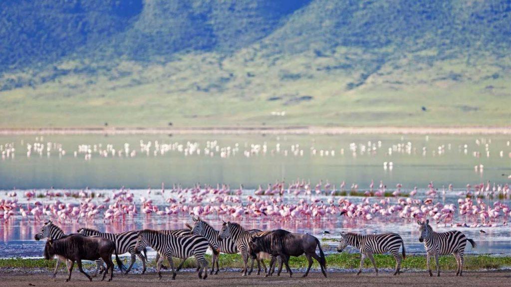 Voyage sur mesure cratère du Ngorongoro